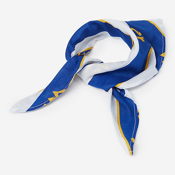 Blue and Yellow Bandana