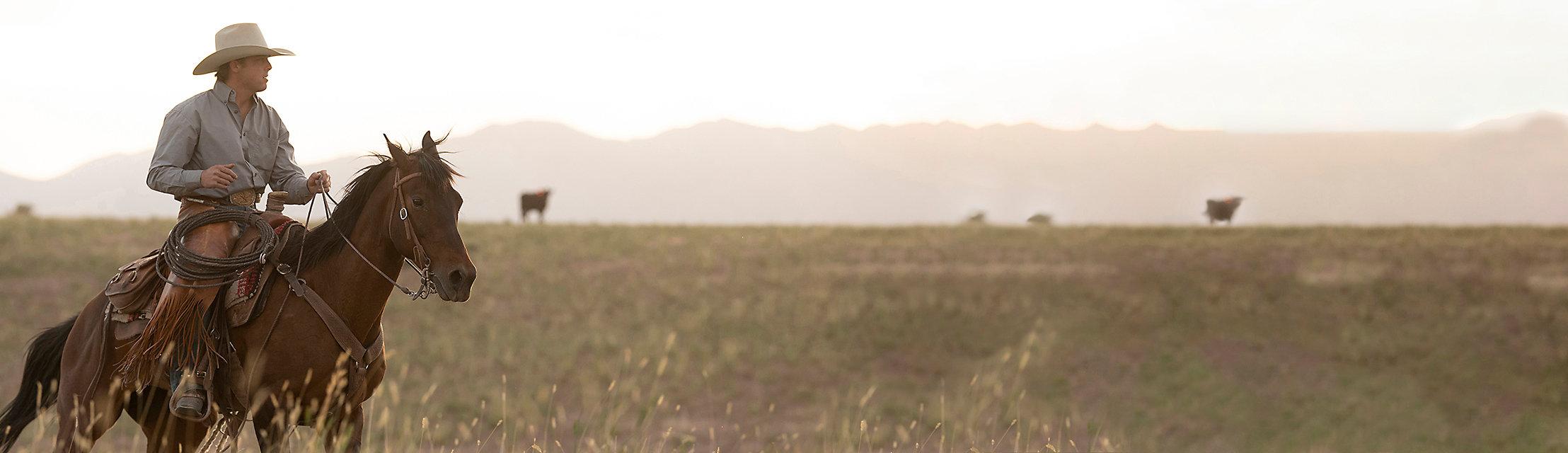 SHOP RODEO | Wrangler