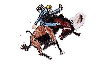 Cowboy Patch